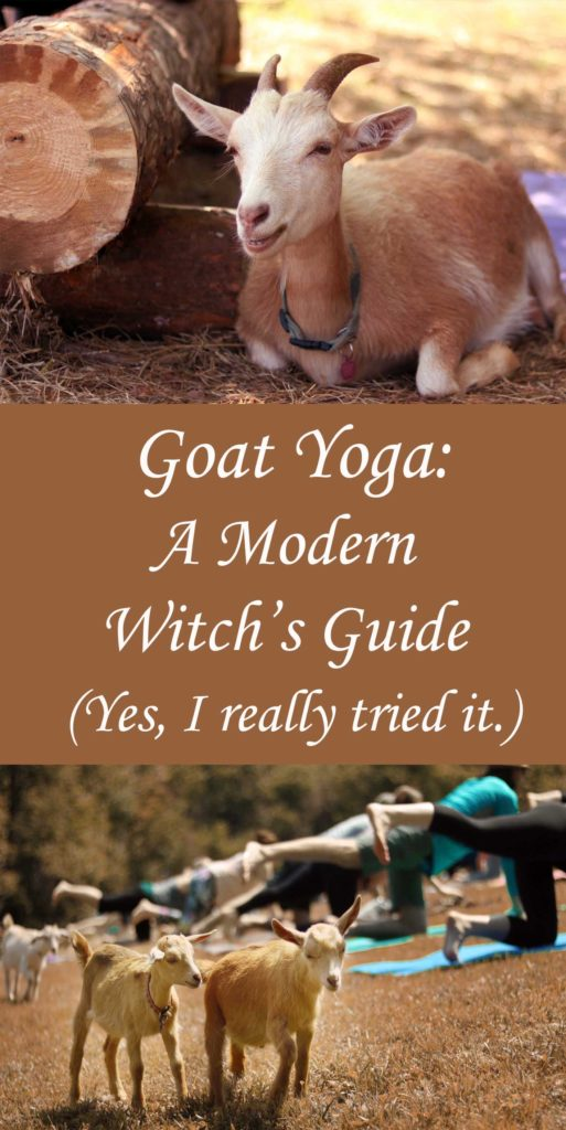 Goat Yoga: A Modern Witch's Guide to Alternative Health