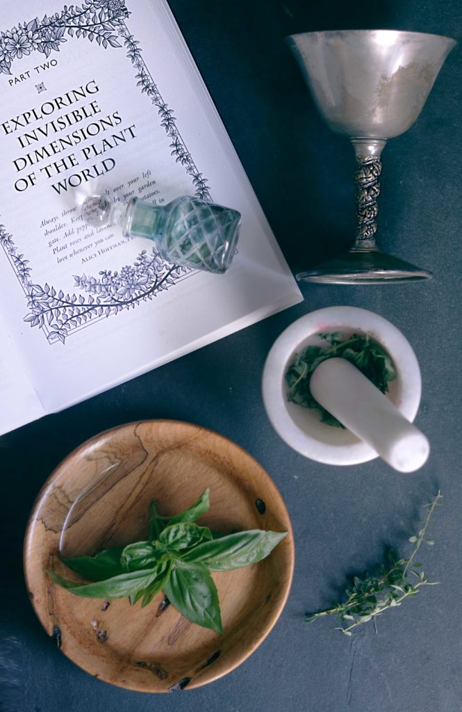 Finding an altar item or spell component at a thrift store makes any witch's heart smile. Here's a few common ones to look for.