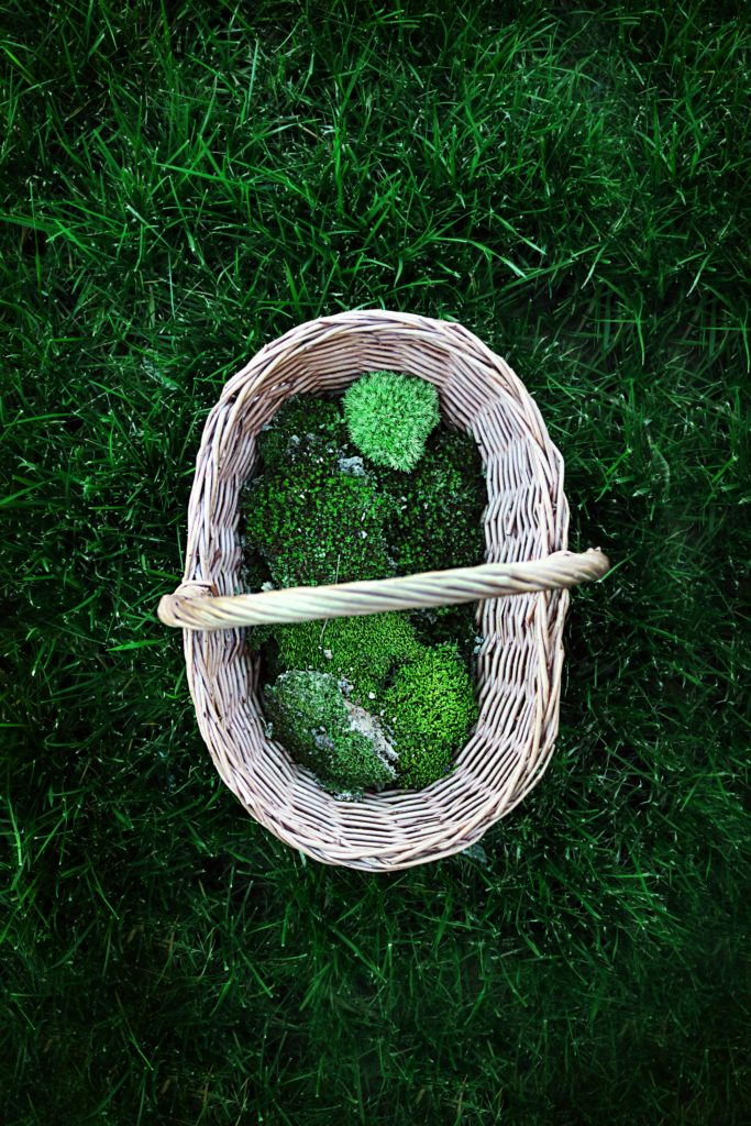 Line spring gift baskets with hand-gathered natural moss instead of the fake plastic stuff.