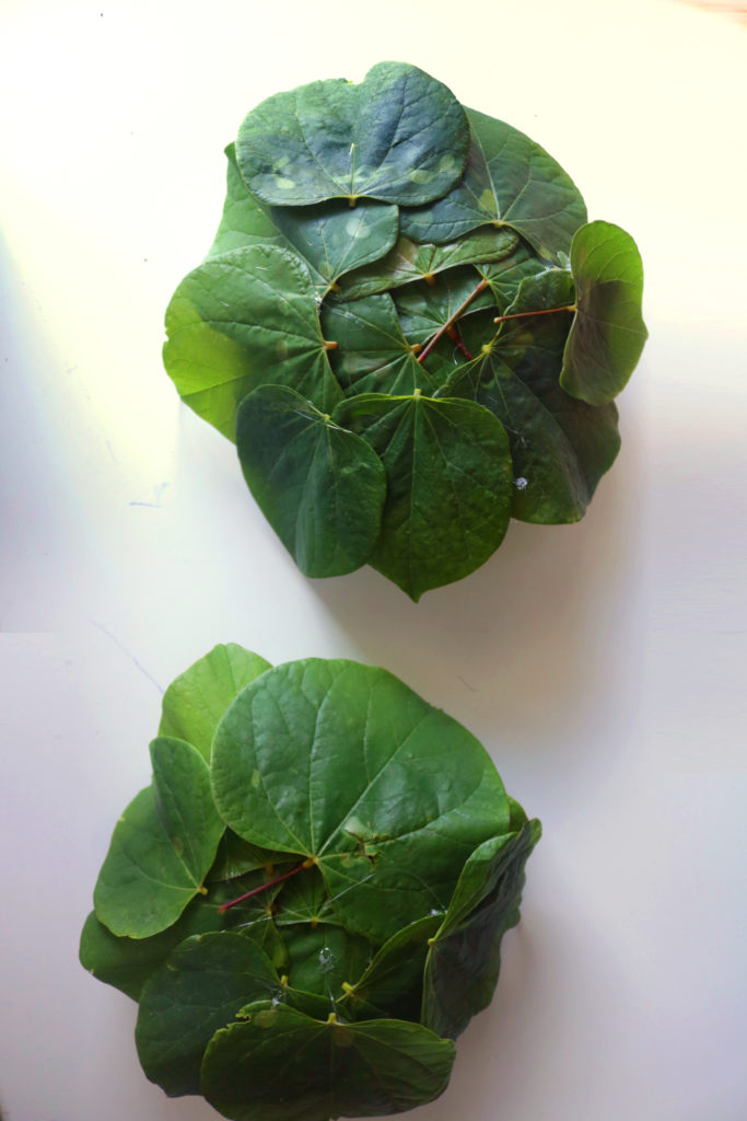 How to make leaf bowls for a candle float.