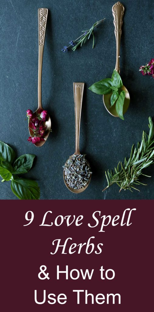 9 alluring love spell herbs to try and how to use them.