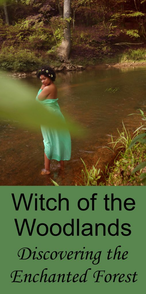 Witch of the Woodlands: Discovering the Enchanted Forest
