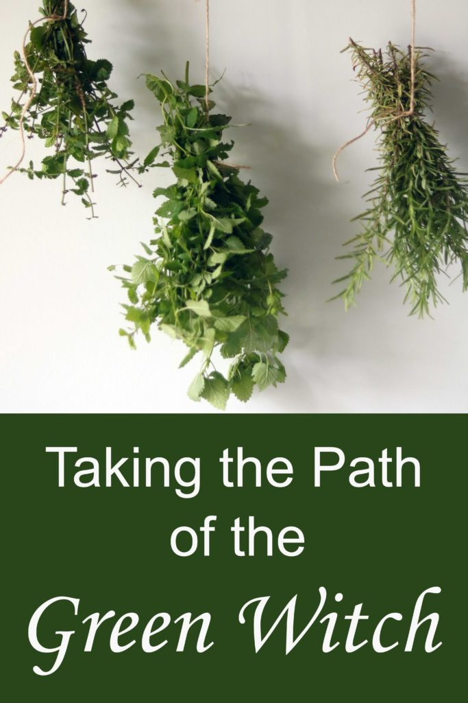 Ideas and advice for becoming a successful green witch from the ground up.