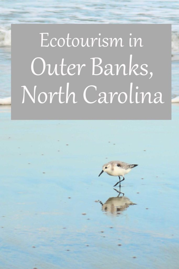 Ecotourism and the earth-friendly vacation experience in Outer Banks, North Carolina.